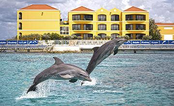 free access to Sea Aquarium at Curacao